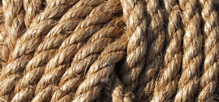 Лекция по верёвкам от Енота